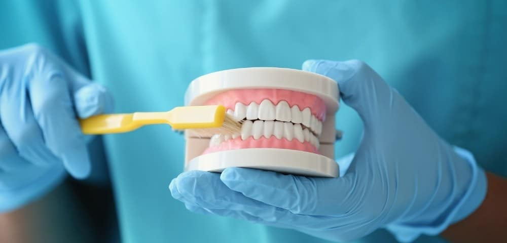 dental hygienist showing how to properly brush teeth